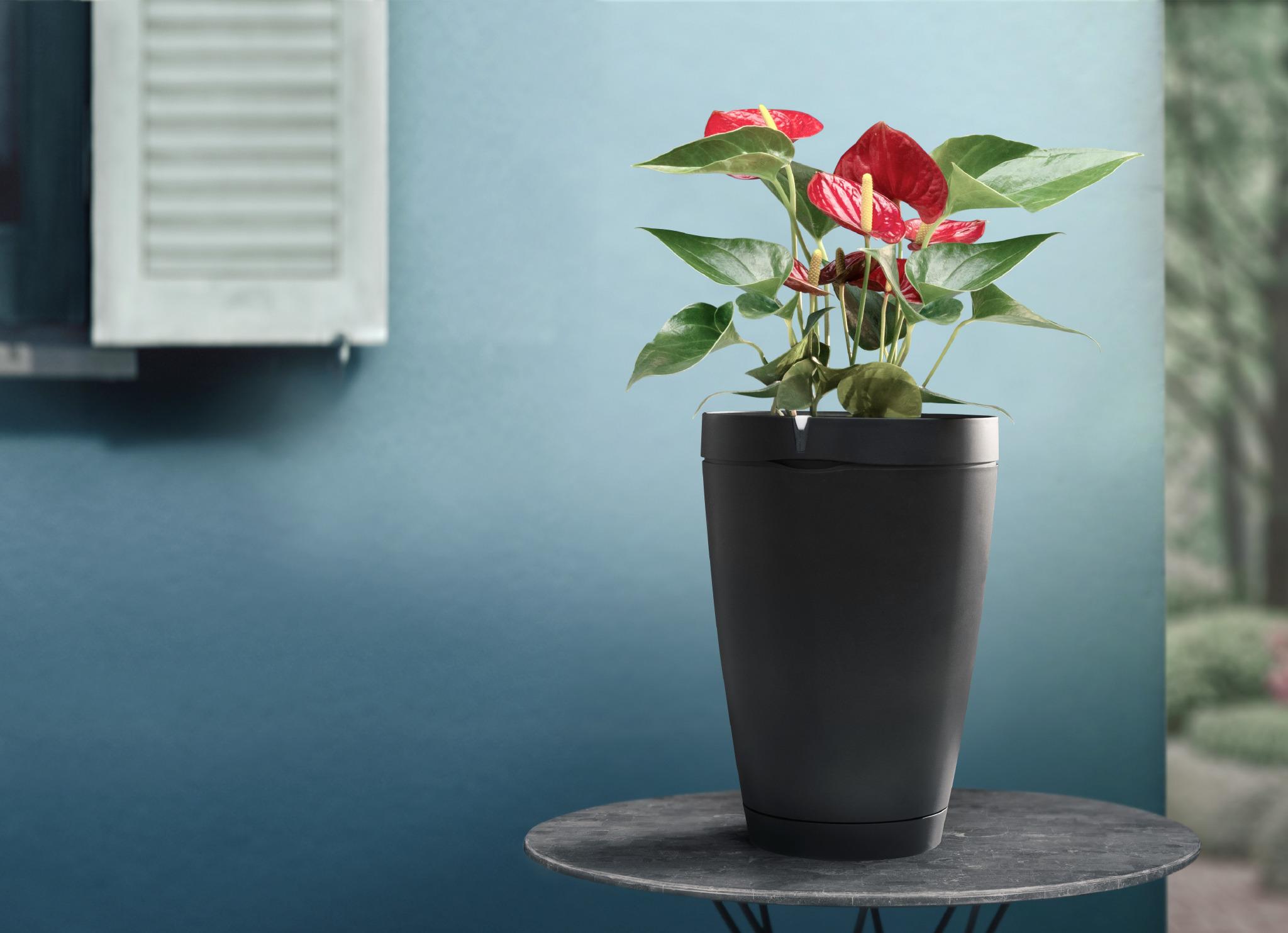 Parrot Pot: il vaso intelligente che risolve il problema delle piante quando siamo in vacanza | Primavera/Estate 2017