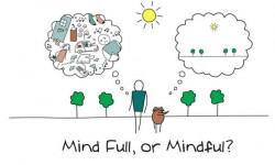 Mindfulness e manager