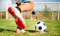 Real Estate Asset &Fund Management CUP: l'Immobiliare scende in campo!